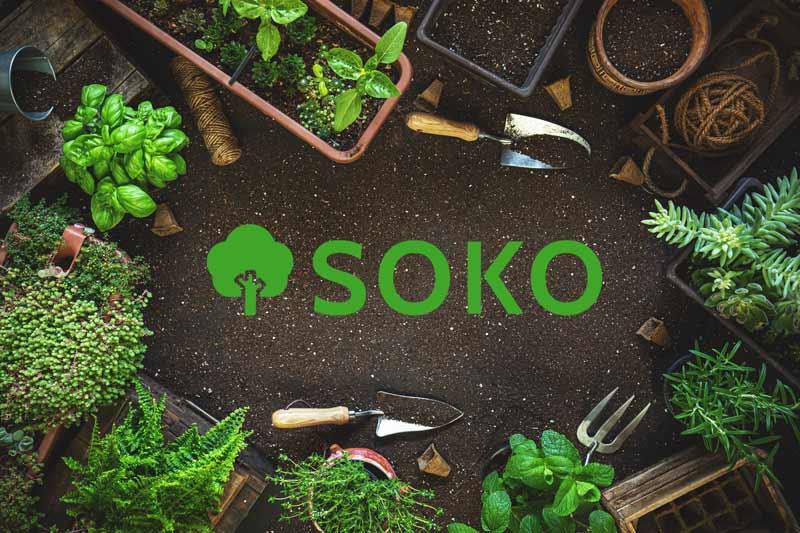 Winterharte Kräuter und das Logo von SOKO Garten- und Landschaftsbau in Mülheim